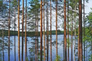 Ympäristönsuojelu ja ihmisoikeudet linkittyvät toisiinsa.